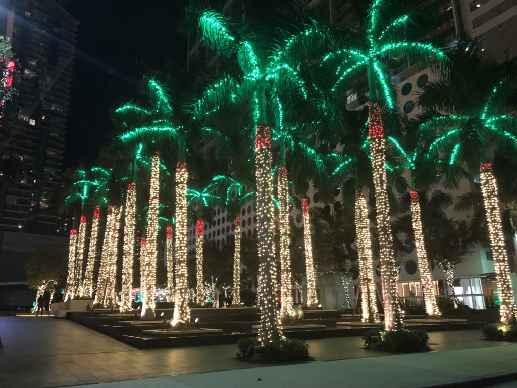 Palm Trees in Downtown, Miami decorated with Christmas lights, green lights on the palm fronds and red around the top of the trunk and white from the red part down to the roots. Very festive!